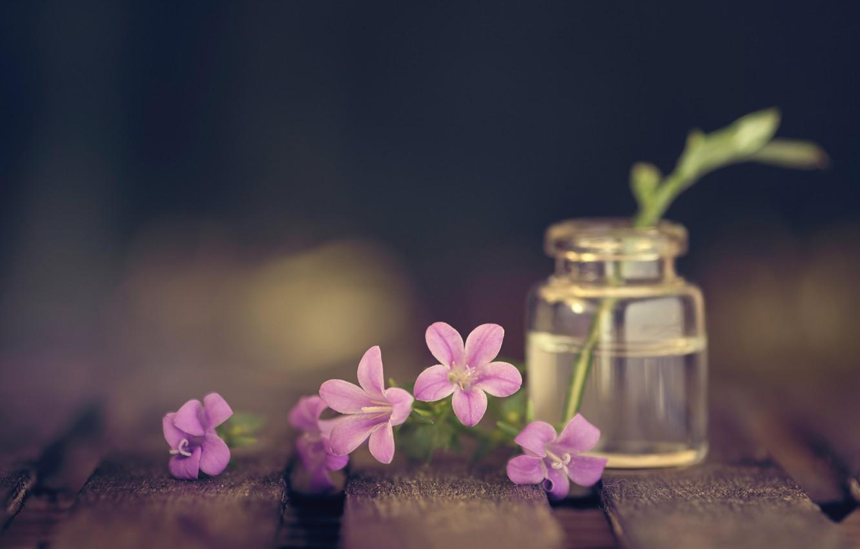 Фото обои макро, цветы, стиль, доски, колокольчики, пузырёк