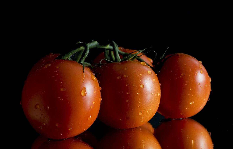 Фото обои капли, фон, помидоры