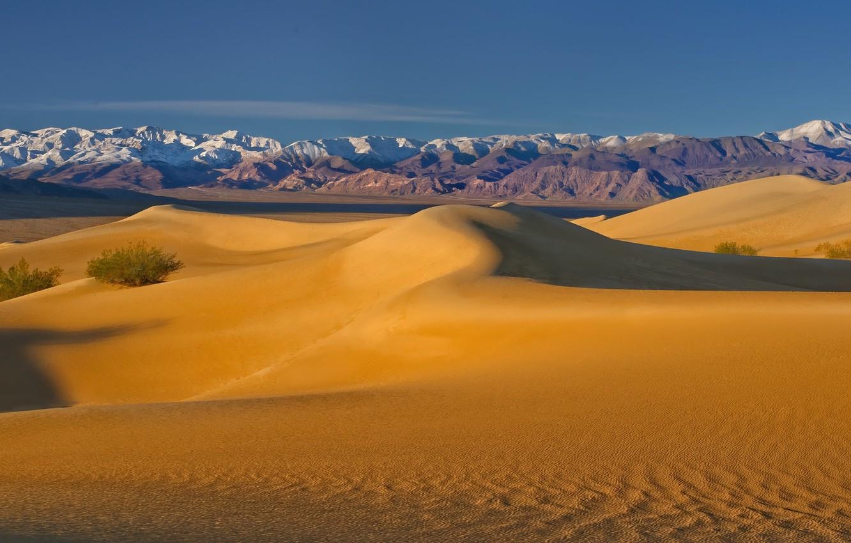 Фото обои пустыня, дюны, Калифорния, США