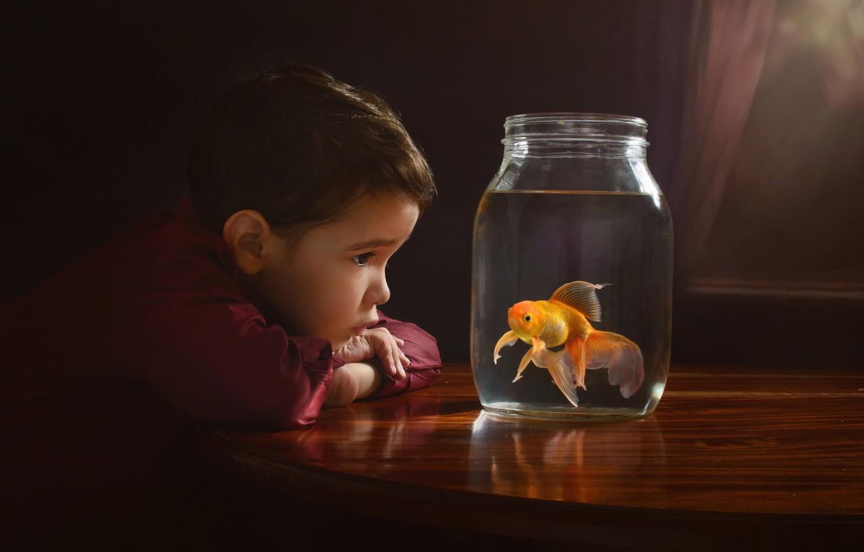 Фото обои мальчик, золотая рыбка, банка