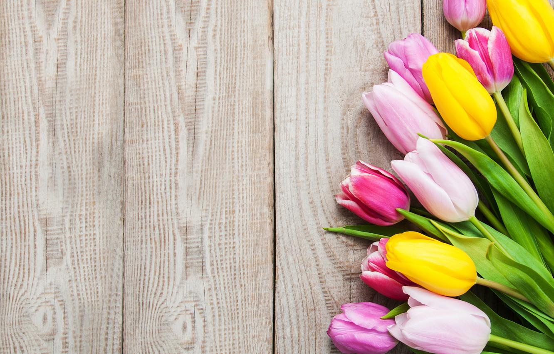 Фото обои colorful, тюльпаны, розовые, yellow, wood, pink, flowers, tulips