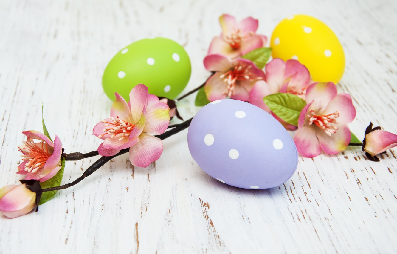 Фото обои цветы, яйца, colorful, Пасха, happy, wood, pink, blossom, flowers, spring, Easter, eggs, decoration