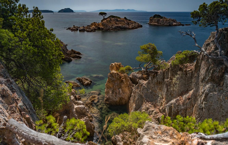 Фото обои море, деревья, пейзаж, природа, скалы, Франция