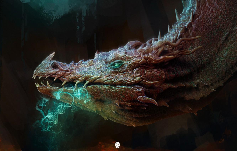 Фото обои взгляд, дракон, голова, фэнтези, арт, профиль