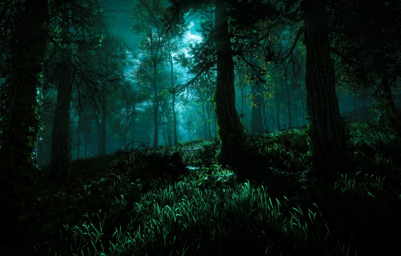 Фото обои Небо, Деревья, Horizon, Sony Computer Entertainment, Guerrilla Games, Horizon: Zero Dawn, Horizon Zero Dawn