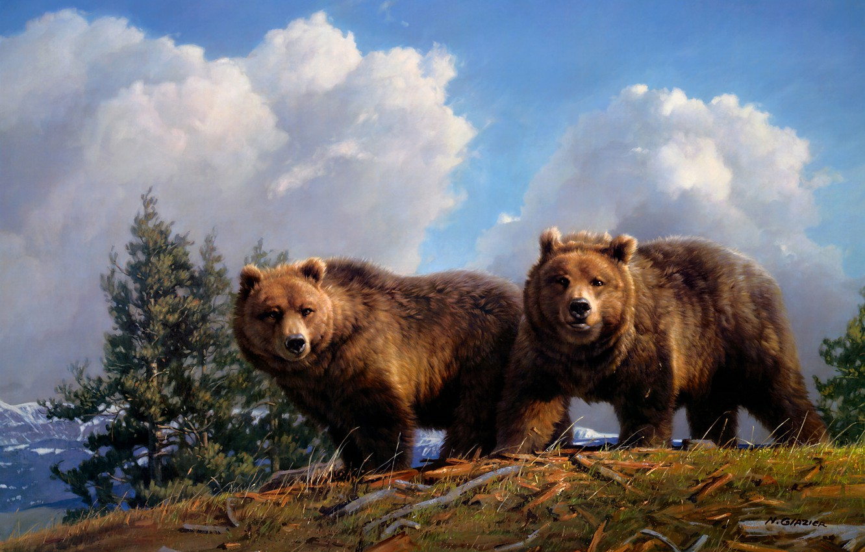 Фото обои небо, взгляд, облака, деревья, горы, ветки, природа, поза, синева, рисунок, графика, картина, медведь, медведи, холм, …
