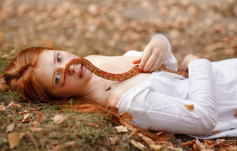 Фото обои осень, взгляд, листья, девушка, лицо, настроение, змея, рыжая, рыжеволосая, by Светлана Никотина, Анастасия Савичева