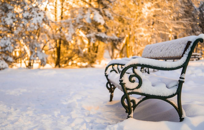 Фото обои снег, скамья, snow, bench, winter park, Зимний парк