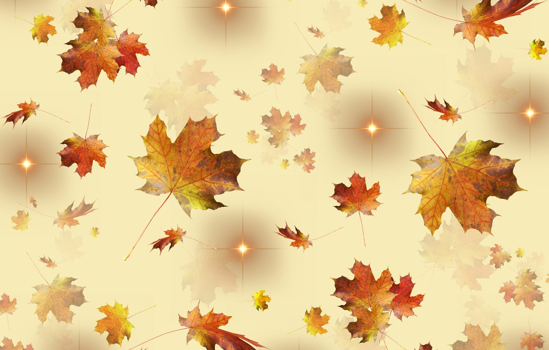 Фото обои golden, autumn, leaves, stars, season, fallen