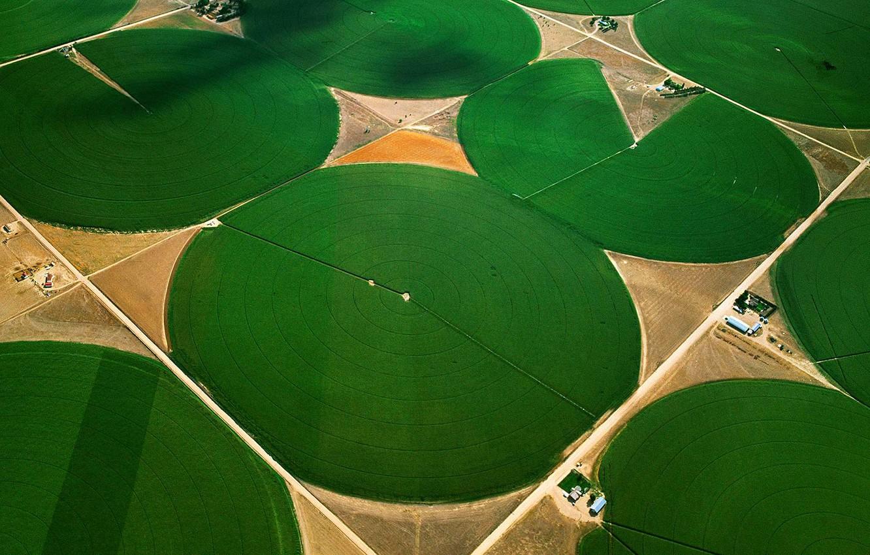 Фото обои поля, Колорадо, США