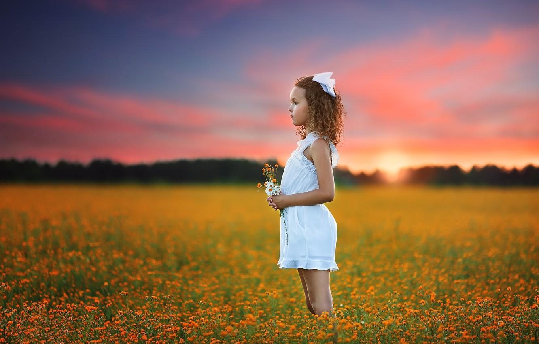 Фото обои поле, лето, закат, природа, девочка
