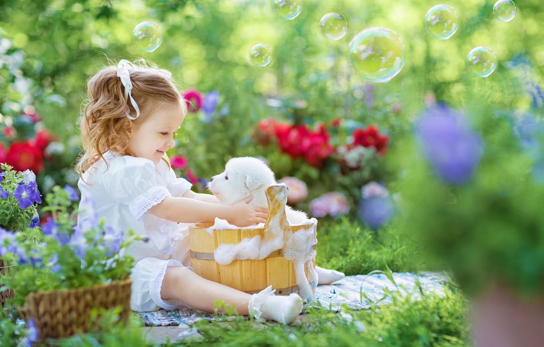 Фото обои пена, радость, цветы, настроение, купание, мыльные пузыри, девочка, щенок, кадка, боке