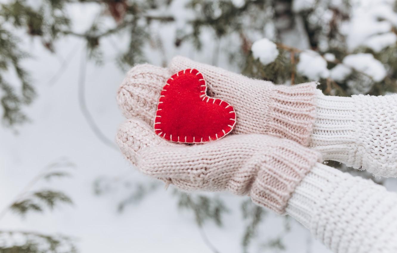 Фото обои зима, снег, любовь, сердце, елка, red, love, heart, winter, варежки, snow, romantic, hands, valentine, fir …