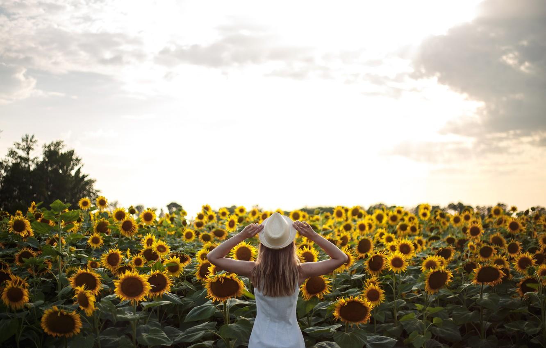 Фото обои небо, облака, подсолнухи, поза, Девушка, шляпа, Анна Ковалева