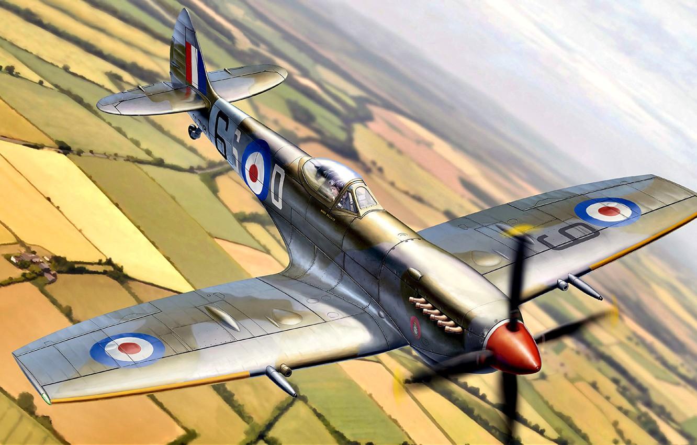 Обои Spitfire Mk.XVI, Packard Merlin 266, Royal Air Force, истребитель - бомбардировщик, американский двигатель, с каплевидным фонарём. Авиация foto 6