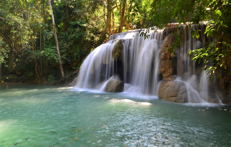 Фото обои лес, пейзаж, река, скалы, водопад, summer, forest, тропический, river, landscape, beautiful, waterfall, tropical
