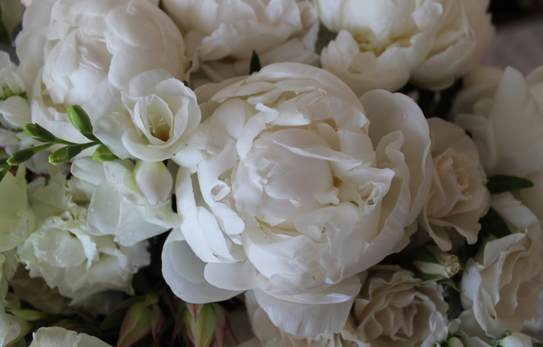 Фото обои белый, макро, букет, пион, фрезия, эвкалипт, кустовые розы