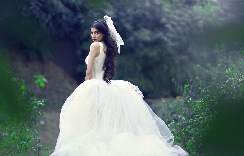 Фото обои девушка, поза, волосы, платье, попугай, свадебное