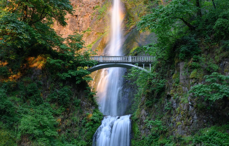 Фото обои зелень, лето, свет, горы, ветки, мост, скалы, листва, водопад, растиетльность