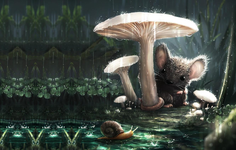 Фото обои дождик, лето, гриб, улитка, мышка, арт, друзья, детская, знакомство, Sebastián Montecinos, A new friend