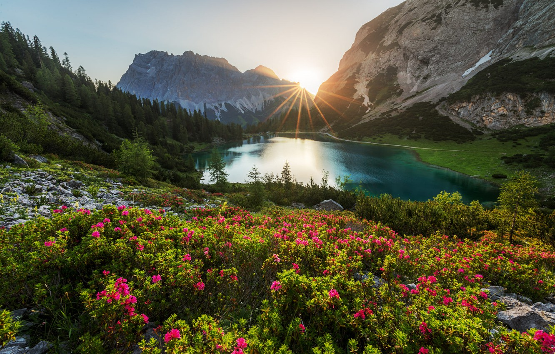 Фото обои лес, солнце, лучи, пейзаж, горы, природа, озеро, растительность, Австрия, Альпы, Seebensee