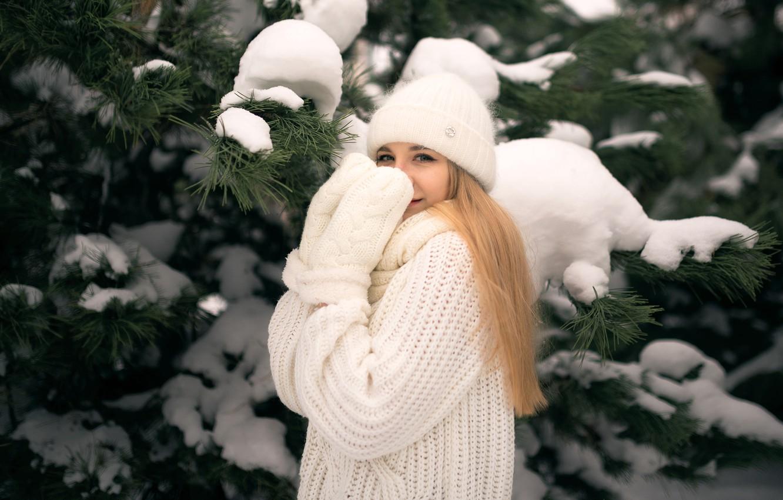 Фото обои зима, девушка, снег, ветки, шапка, блондинка, хвоя, сосна, варежки, свитер, рукавицы, Николай Брехов