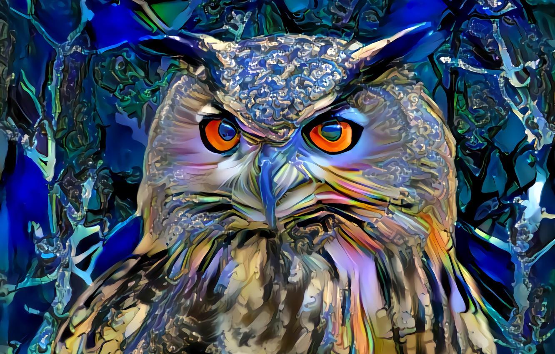 Фото обои сова, краски, арт
