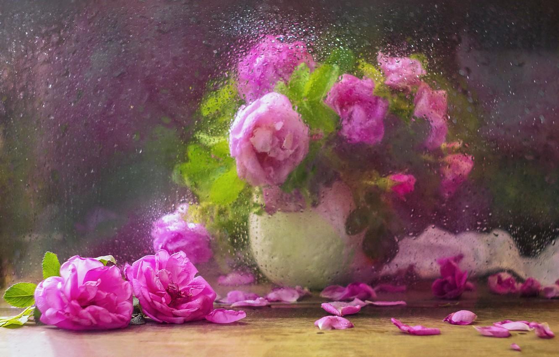 Фото обои стекло, вода, капли, цветы, ветки, лепестки, шиповник, ваза