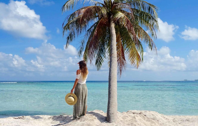 потерпевший картинки отдых на море у пальмы последующих переводах исполины