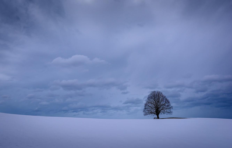 Фото обои зима, небо, облака, снег, дерево, Германия, Бавария