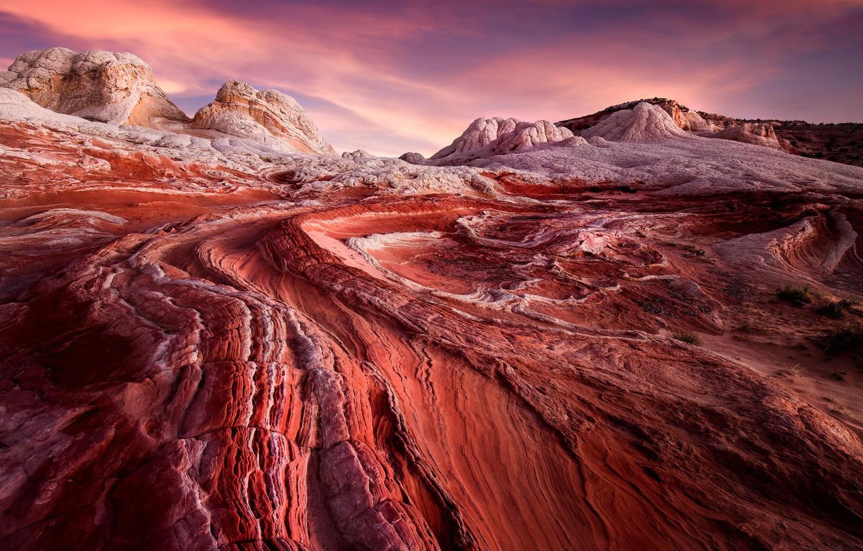 Фото обои desert, sunrise, usa, arizona, white pocket