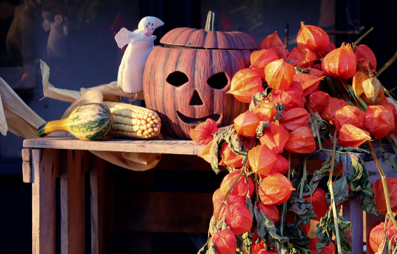 Фото обои осень, тыква, хэллоуин, физалис, хеллоуин, рожица, глазницы
