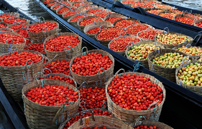 Фото обои еда, овощи, помидоры