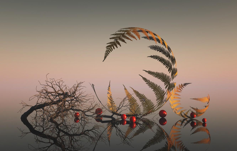 Фото обои листья, ветки, отражение, leaves, reflection, branches, Esther Margraff