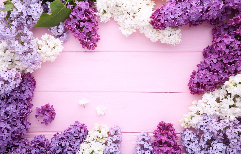 Фото обои цветы, фон, wood, flowers, сирень, purple, lilac