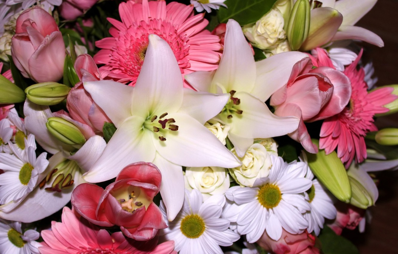 фото самых красивых лилий и ромашек них давно
