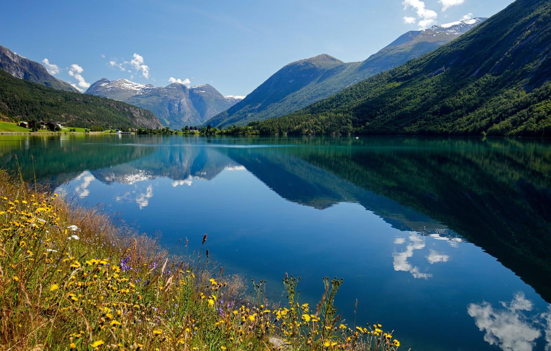 Фото обои цветы, горы, отражение, Норвегия, залив, Norway, фьорд, Стрюн, Nordfjord, Stryn, Нордфьорд
