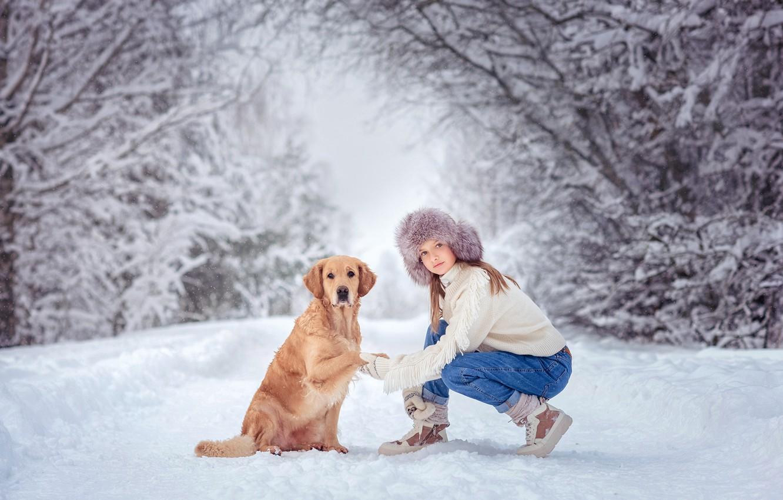 Фото обои зима, девушка, снег, деревья, природа, животное, собака, пёс, ретривер, Виктория Дубровская