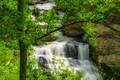 Картинка США, камни, ветки, Great Smoky Mountains National Park, ручей, скалы, зелень, листва, Грейт-Смоки-Маунтинс, кусты, деревья, ...