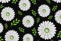Картинка цветы, текстура, черный фон, Green, Design, Colorful, Background, Leaves, Floral