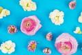Картинка цветы, фон, розы, white, белые, бутоны, fresh, pink, flowers, голубой фон, roses